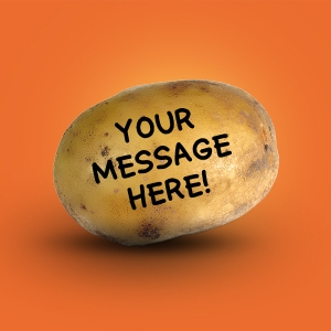 Potato Message - Potato Transit